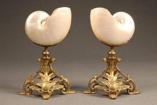 Pair of large nautilus shells A5508A