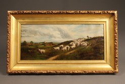 English landscape with sheep A5486A